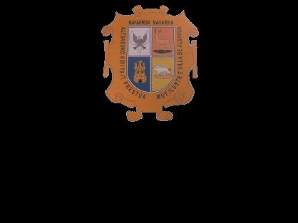 Altsasuko Udala